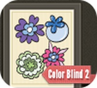 Color Blind 2