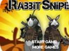 الأرنب القناص