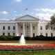 «نيويورك تايمز»: موظفو الخدمة السرية نقلوا ترامب لمخبأ تحت الأرض في البيت الأبيض